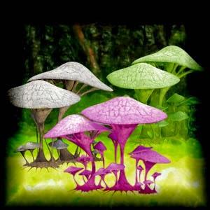 http://3.bp.blogspot.com/-l7iKXP7aQAQ/U5PcGi-TfuI/AAAAAAAACwI/xO7yvROa-Dg/s1600/Mgtcs__Colored_Mushrooms.jpg