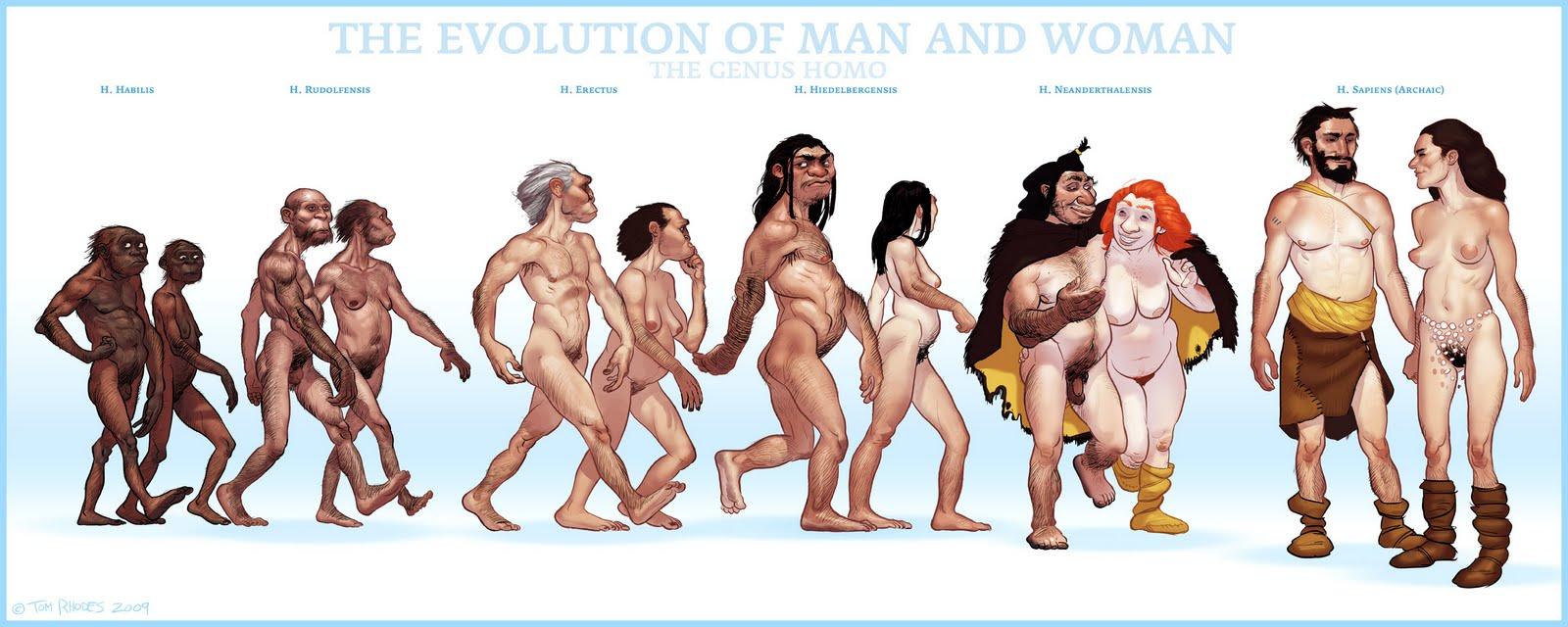 Resultado de imagen para evolucion humana