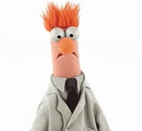 Picture of Muppet Scientist