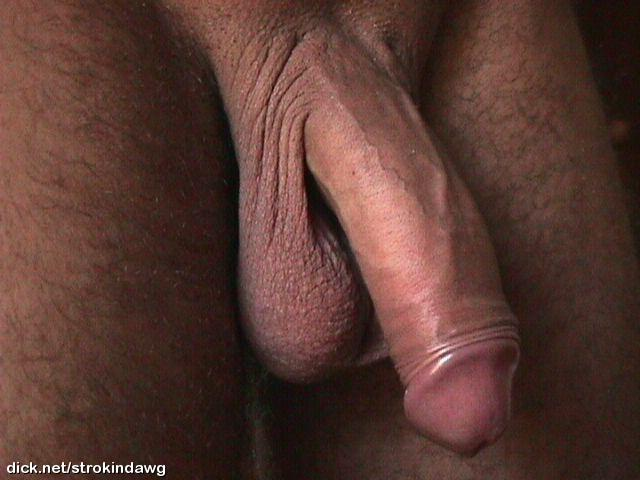 porno vergas Horny Dude Wants To Suck Shlong.