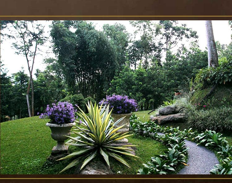The Michael Resorts, Gunung Salak Endah, Bogor: Garden