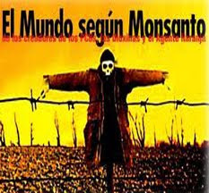 Monsanto. Transgenicos.