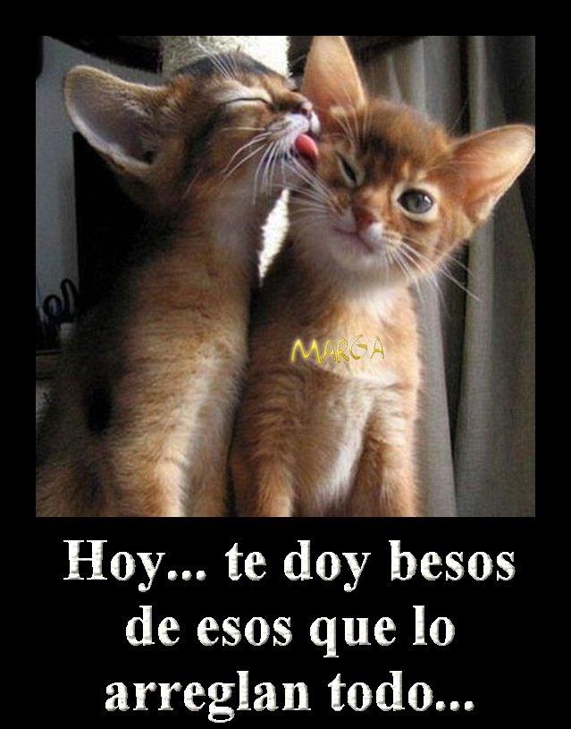 De entrecasa-con-Marga: Feliz martes con Besos y amor...