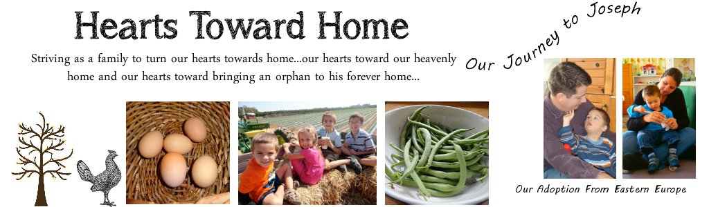 Hearts Toward Home