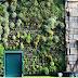 Ο μεγαλύτερος κάθετος κήπος στον κόσμο!