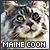 I like Maine Coons