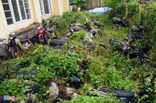 Hàng nghìn xe máy phơi mưa nắng, dây leo quấn kín
