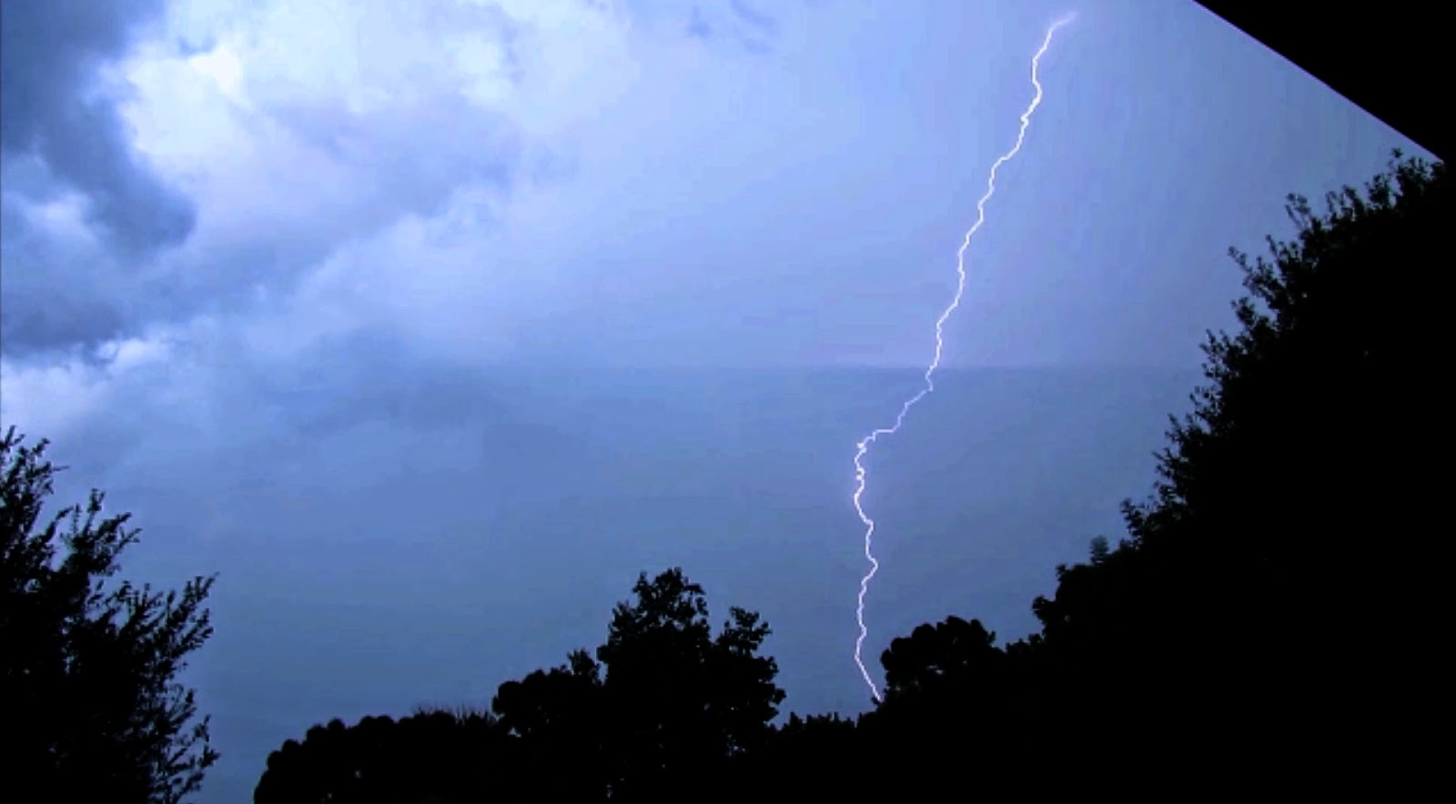 thunderstorm lightning and Cicadas in Florida