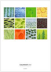 Calendars By Thomas Paul Murphy