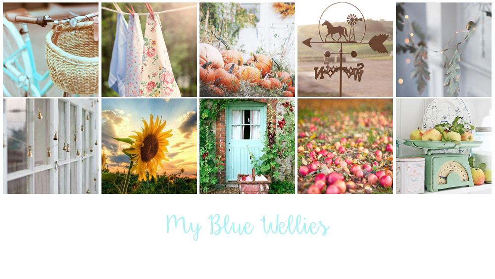 My Blue Wellies