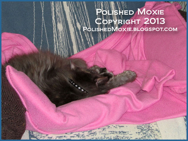 Picture of my cat Gracie sleeping on a pink snuggie.