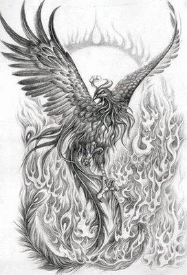 Phoenix Tattoos on Phoenix Tattoo   Hot Magazine