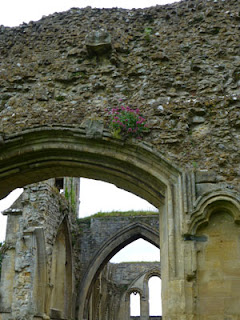 Abbey Ruins, Photo by Kaliani Devinne, Copyright 2013