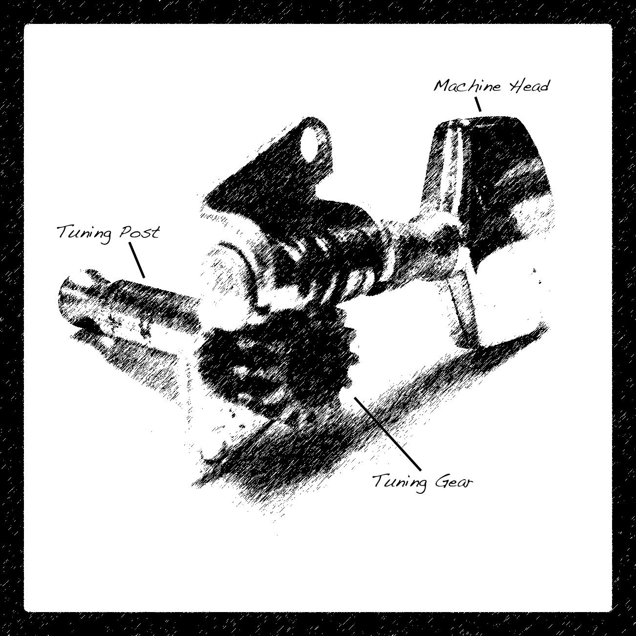 Guitar Anatomy: Tuning Machines | Strings \'N Things
