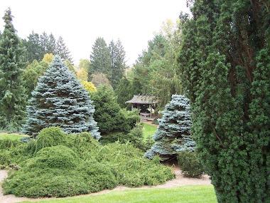Hidden Lake Gardens, Mi.