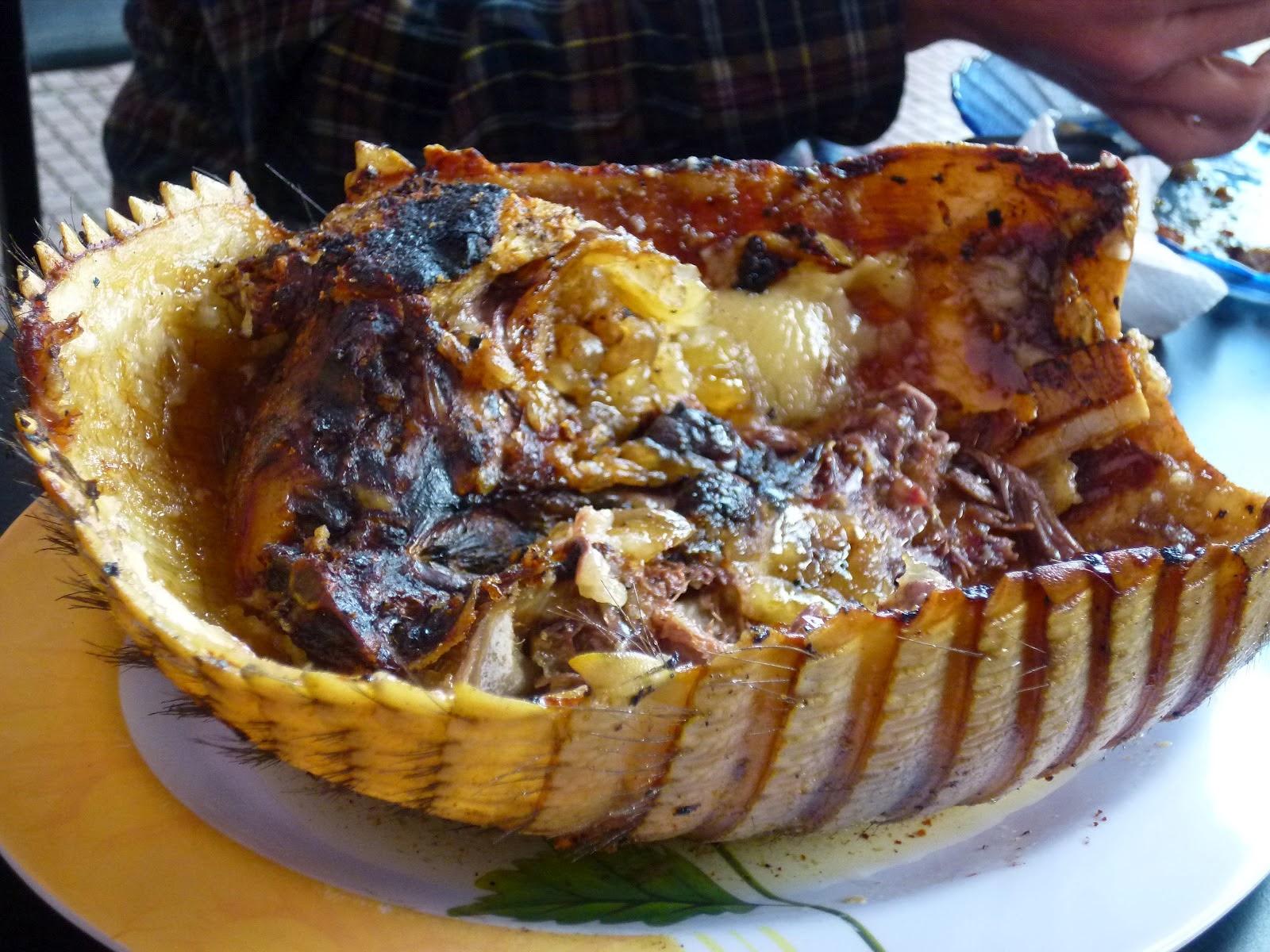 carne de armadillo