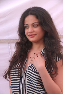 fair foxy Sneha ullal latest photos at anta nee mayalone opening