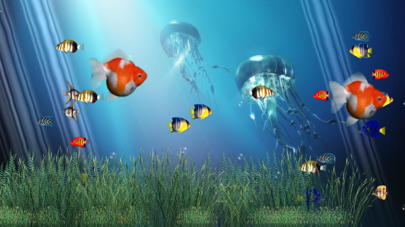 Fish aquarium quotes - Desktop Wallpaper Free Wallpapers Quotes For Iphone Tumblr Life1 Hd Funny Love For Mobile On Sad Love Happiness For Cell Phones