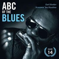 ABC of the blues volume 14