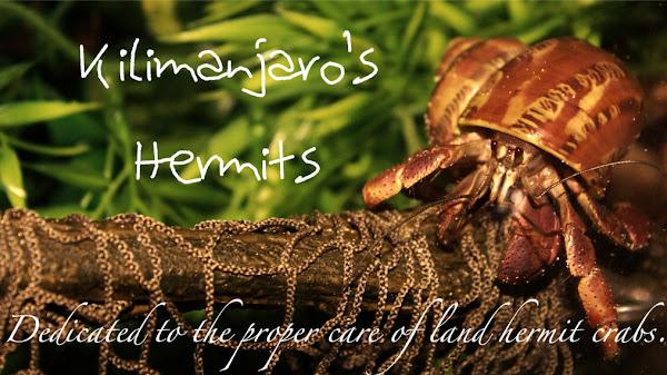Kilimanjaro's Hermits
