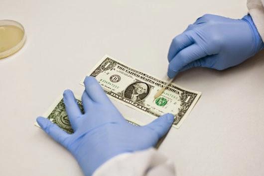 vi khuẩn trên tiền