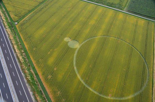 Interpretación del Crop Circle Reportado el 6 de Junio en Barbiano Cotignola, nr Ravenna. Italia