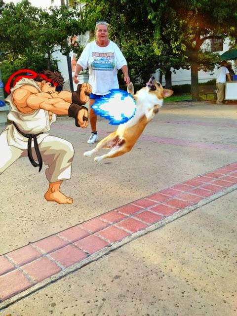 Ryu maltratando a un perrete