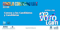 ELECCIONES AL CONSEJO CONSULTIVO LGBT 2019–2020