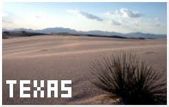 Reiseblog Texas 2008