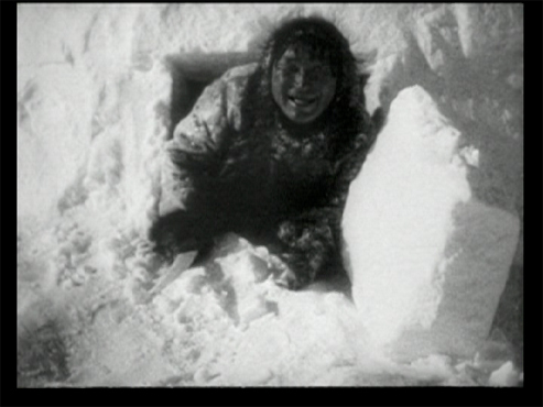 nanook of the north essay Database of free film studies essays - we have thousands of free essays across a wide range of subject areas  nanook of the north: an overview.
