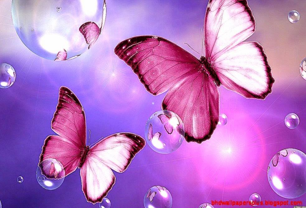 Download Beautiful Pink Butterfly Flower Wallpaper 1229x768  Full
