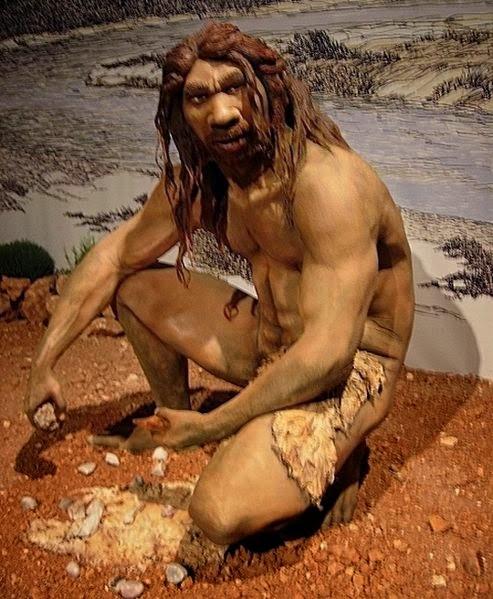 Gambar Manusia Purba - Homo Heidelbergensis