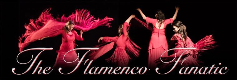 Flamenco Fanatic