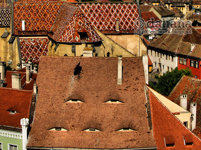re cz l the big backyard contest between czernowitz and sibiu from