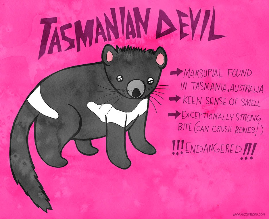 My Zoetrope 291 Tasmanian Devil