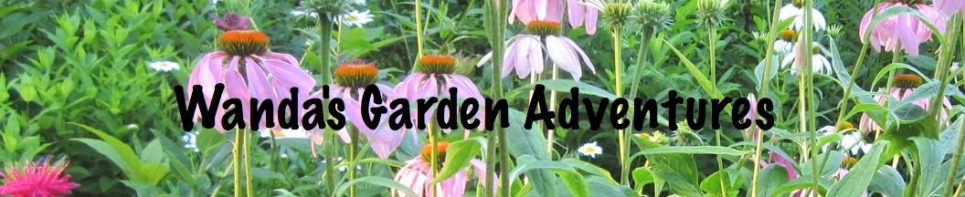 Wanda's Garden Adventures