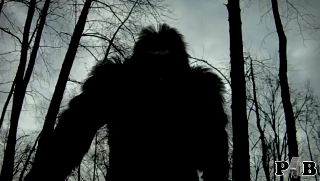 Bigfoot Screams Compared