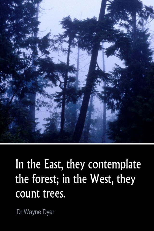visual quote - image quotation for PERSPECTIVE - In the East, they contemplate the forest; in the West, they count the trees. - Dr Wayne Dyer