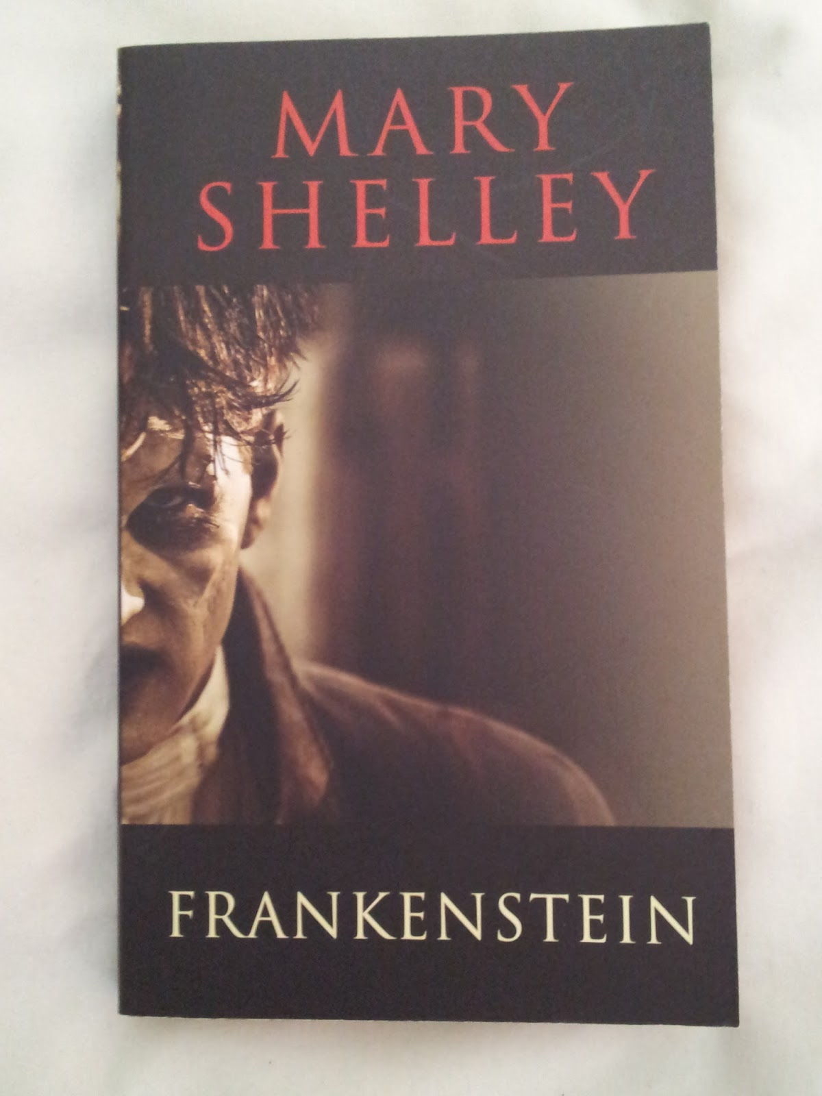 essays on frankenstein by mary shelley