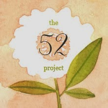 THE 52 PROJECT
