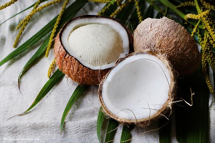 el coco y sus propiedades
