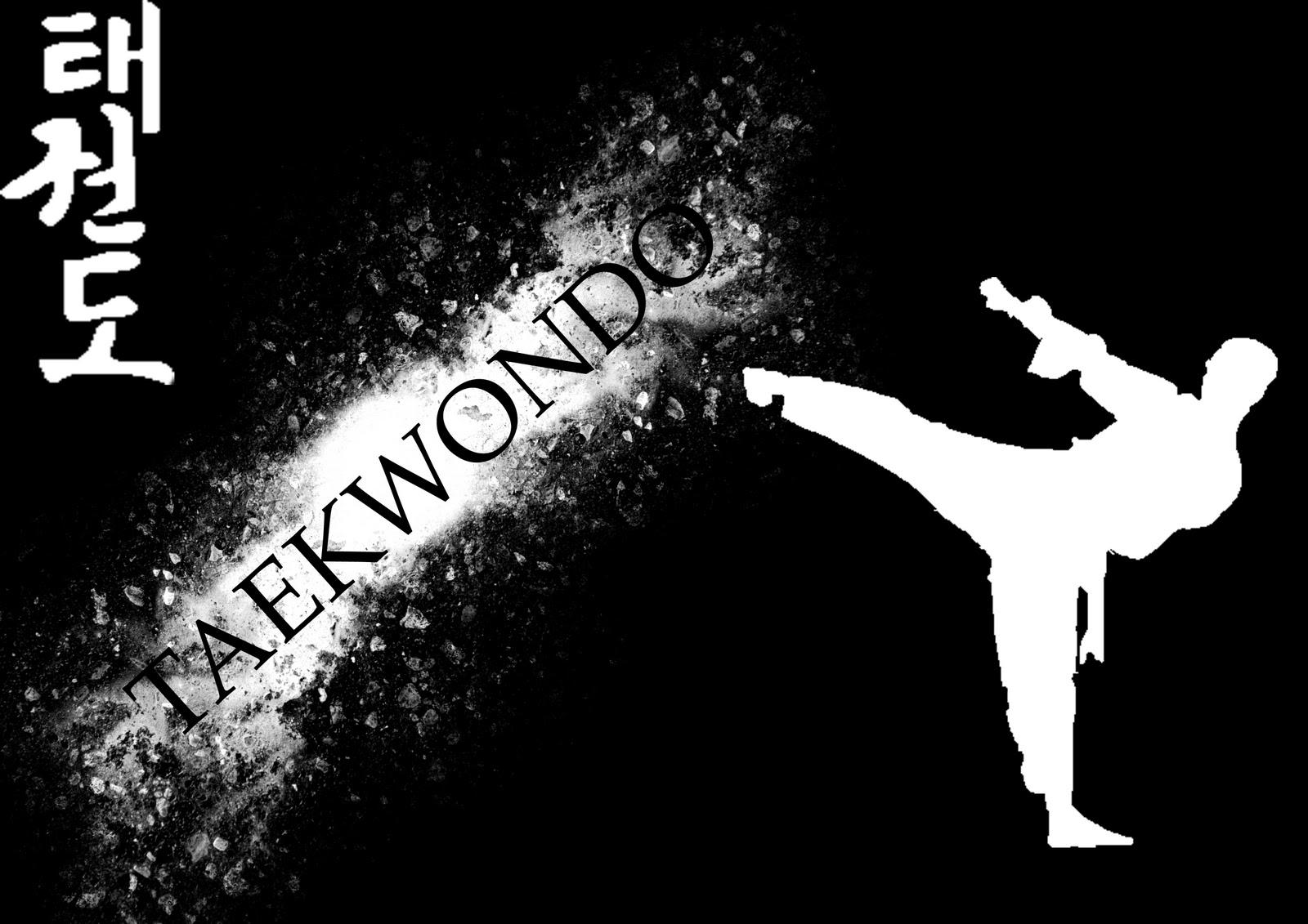 http://3.bp.blogspot.com/-lCs0v4Nv9So/TrSKDVM5GUI/AAAAAAAAAws/86eGfdSvtUc/s1600/Taekwondo_by_djunko.jpg