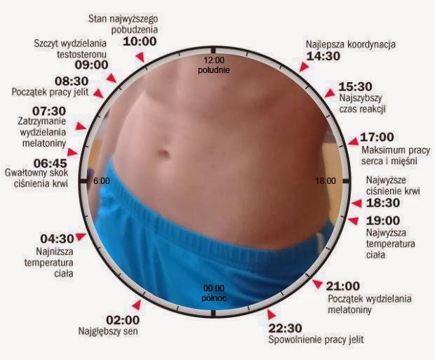 Zegar ciała