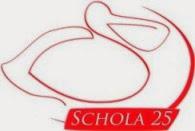 МБОУ гимназия № 25