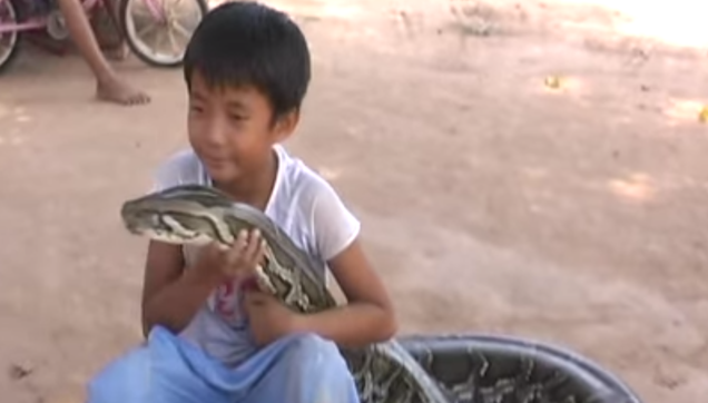 this child and his friend snake is unbeatable