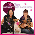 "We Were Named ""BLOG OF THE WEEK"" on the Las Vegas ""Hot Diggity Dog Show!"""