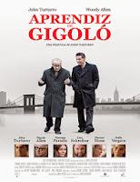 Aprendiz de gigolo (2013) online y gratis