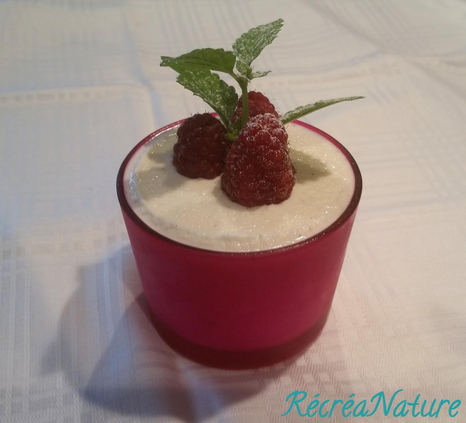 recette glac e facile frozen yogurt et fruits rouges du jardin. Black Bedroom Furniture Sets. Home Design Ideas