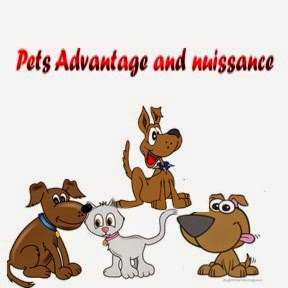 why pople keep pets essay Having a pet may also help people and towns in western nations commonly enact local ordinances to limit the number or kind of pets a person may keep personally.