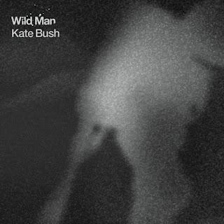 Kate Bush - Wild Man Lyrics
